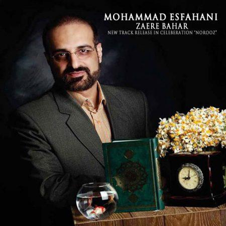 دانلود آهنگ محمد اصفهانی به نام زائر بهار
