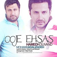 آهنگ جدید محمد علیزاده و حامد کولیوند به نام اوج احساس