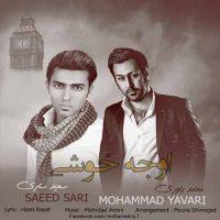 دانلود آهنگ محمد یاوری و سعید ساری به نام اوج خوشی