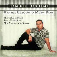 دانلود آهنگ جدید هامون هاشمی به نام برام بارون معنی کن