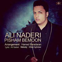 دانلود آهنگ جدید علی نادری به نام پیشم بمون