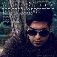 دانلود آهنگ امیر سعیدی به نام تو رو میخوام