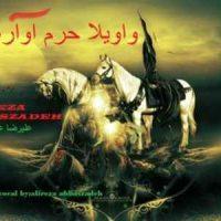 دانلود آهنگ جدید علیرضا عباس زاده با نام واویلا حرم آواره شده