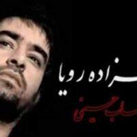 دانلود آهنگ جدید شهاب حسینی به نام شهرزاده رویا