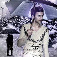 دانلود آهنگ و دکلمه جدید حسین زینالی به نام تنهایی