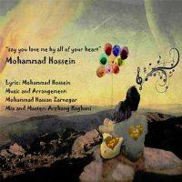 دانلود آهنگ جدید محمد حسین بگو قلبا دوسم داری