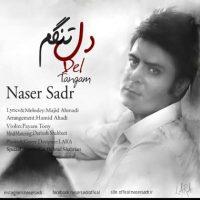 دانلود آهنگ جدید ناصر صدر به نام دل تنگم