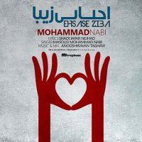دانلود آهنگ مسعود محمد نبی به نام احساس زیبا