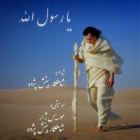 دانلود آهنگ شاهکار بینش پژوه به نام یا رسول الله
