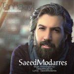 دانلود موزیک ویدیو سعید مدرس به نام تنهایی