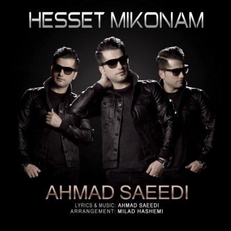 دانلود آهنگ احمد سعیدی به نام حست می کنم
