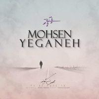 دانلود آهنگ محسن یگانه به نام پا به پای تو (اکوستیک)