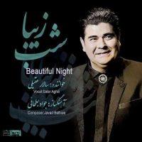 دانلود آلبوم سالار عقیلی بنام شب زیبا