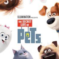 دانلود انیمیشن زندگی خصوصی حیوانات خانگی The Secret Life of Pets 2016