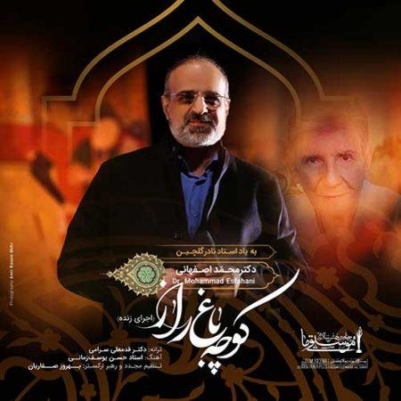 دانلود ورژن اجرای زنده محمد اصفهانی به نام کوچه باغ راز