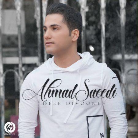 دانلود آهنگ احمد سعیدی به نام دل دیوونه