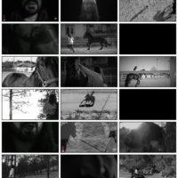 دانلود موزیک ویدیو امیر عباس گلاب عرفان