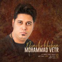دانلود آهنگ محمد وتر نمیبخشم