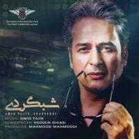 دانلود آهنگ امیر تاجیک شبگردی