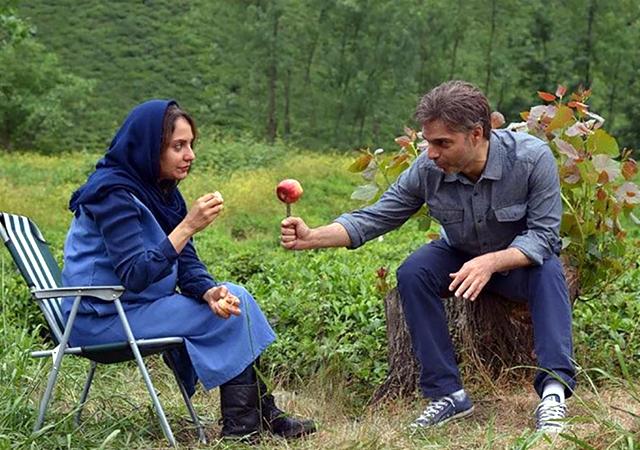 دانلود فیلم ناگهان درخت