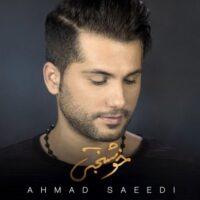 دانلود موزیک ویدیو احمد سعیدی خوشبختی
