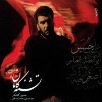 دانلود آلبوم حسین کشتکار به نام تشنه کامان