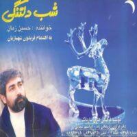 دانلود آلبوم حسین زمان شب دلتنگی