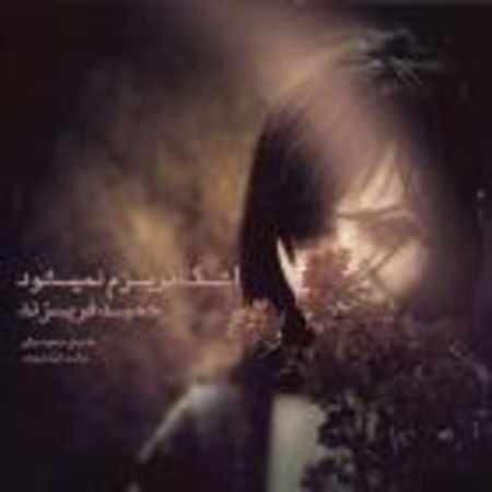دانلود آهنگ حمید فریزند به نام اشک نریزم نمی شود